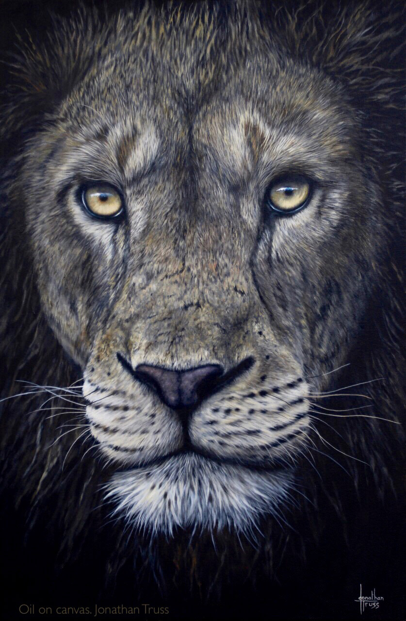 Indomitable - Oil on Canvas - Wildlife Original